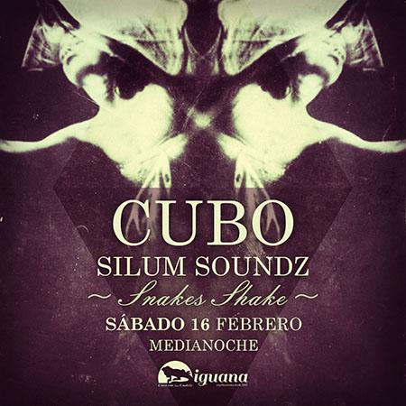 cubo_iguana_16febport