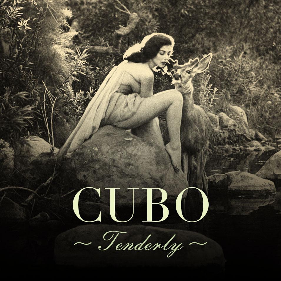 cubo_tenderly