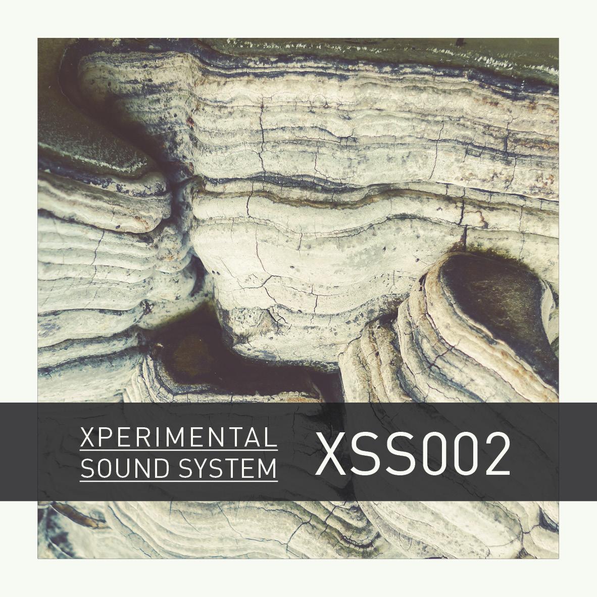 XSS002