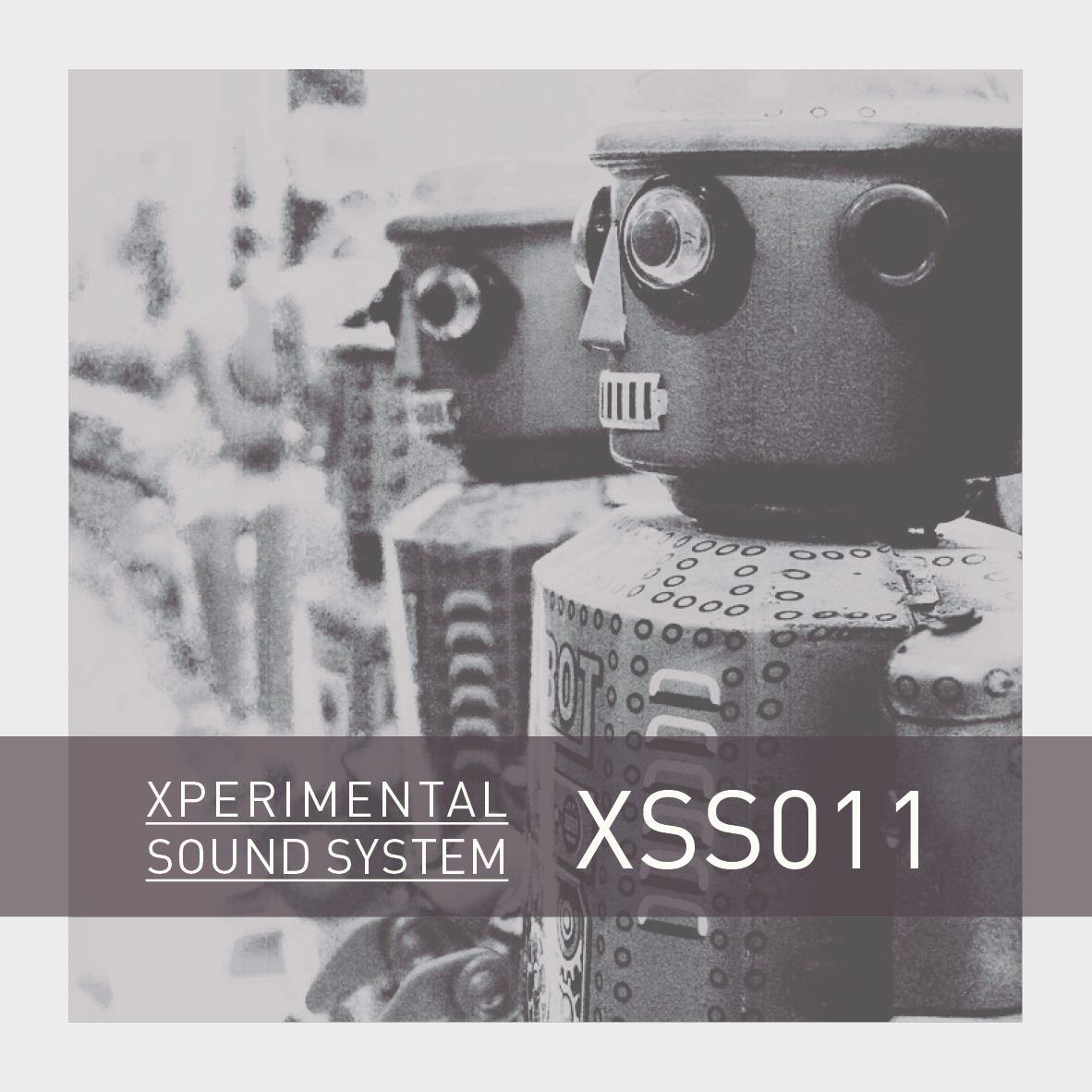 XSS011