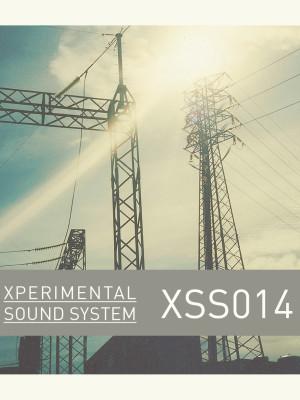 XSS014