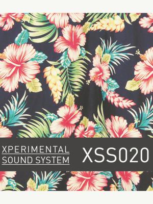 XSS020