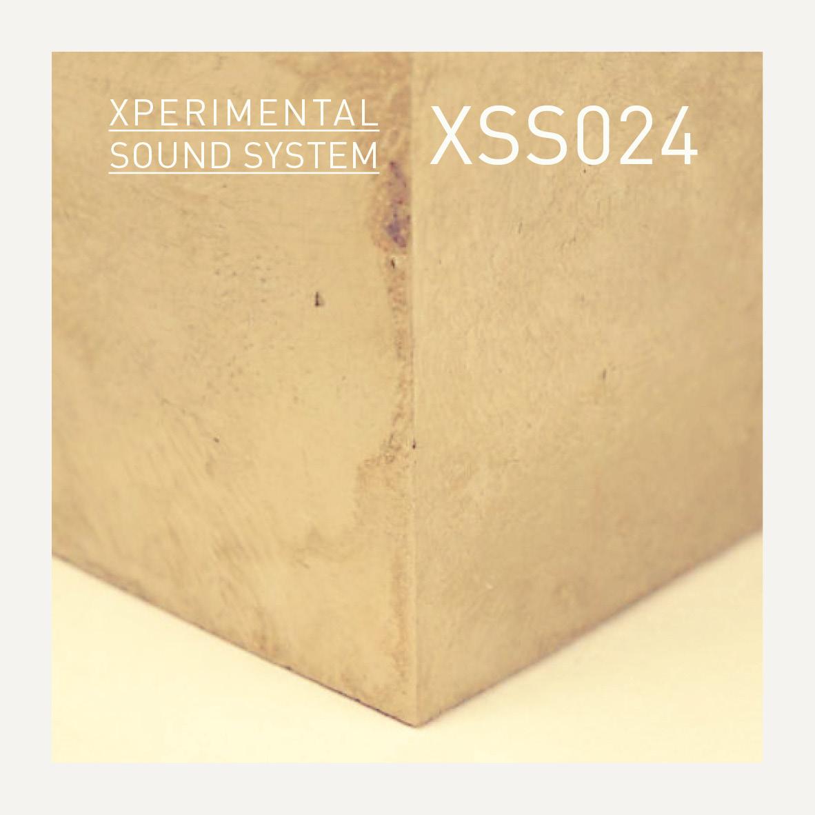 XSS024