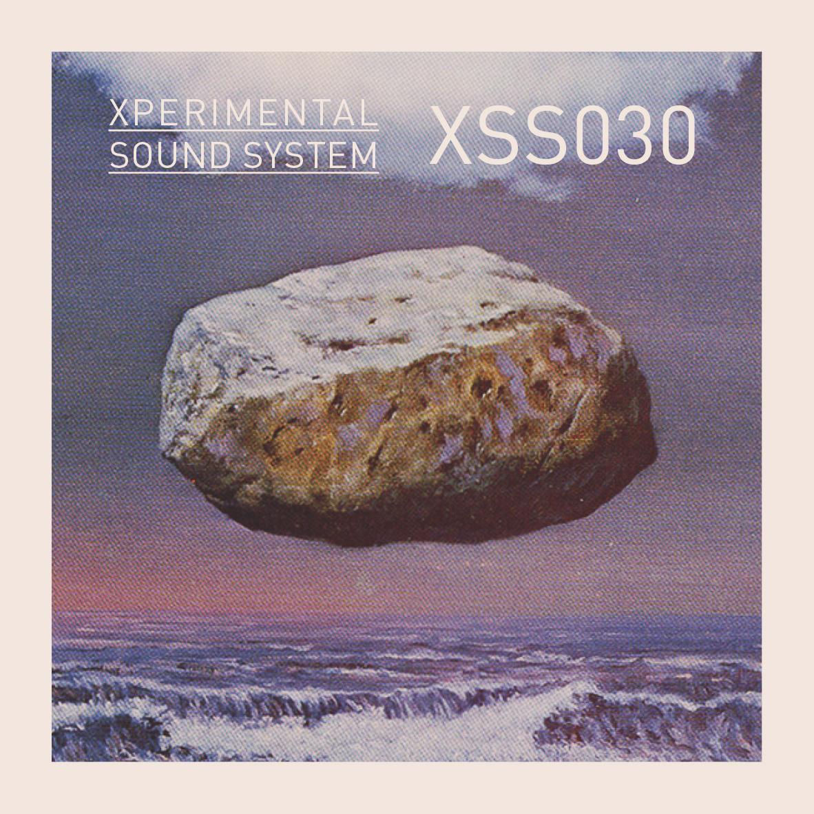 XSS030