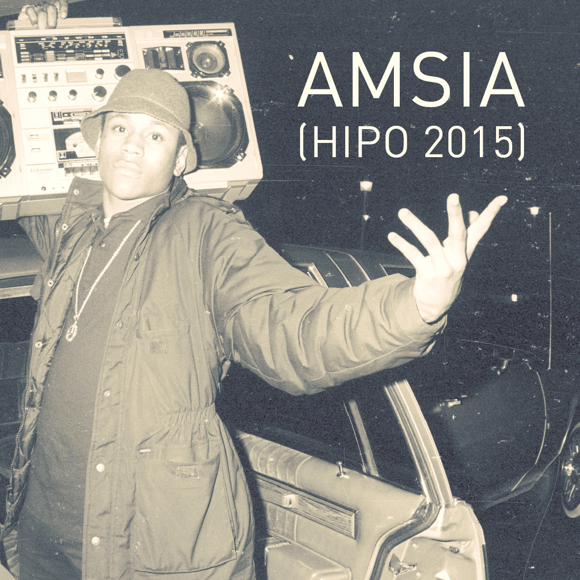 amsia_hipo2015