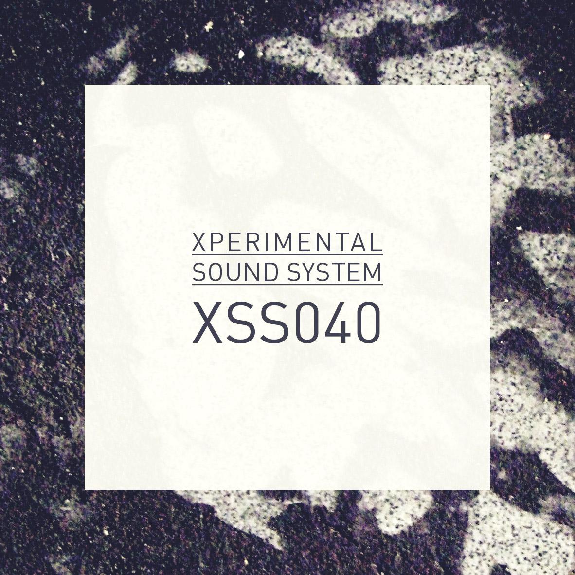 XSS040