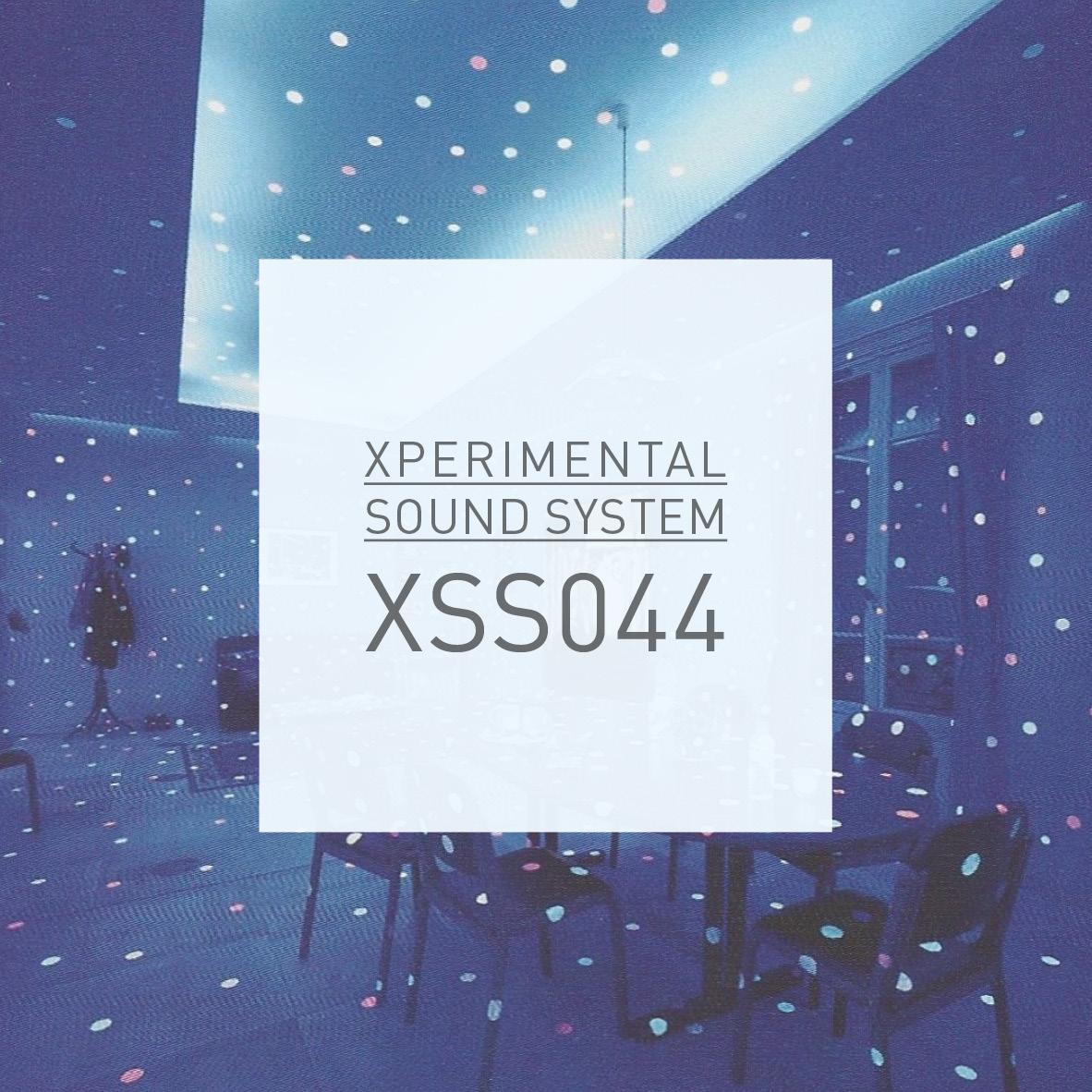 XSS044
