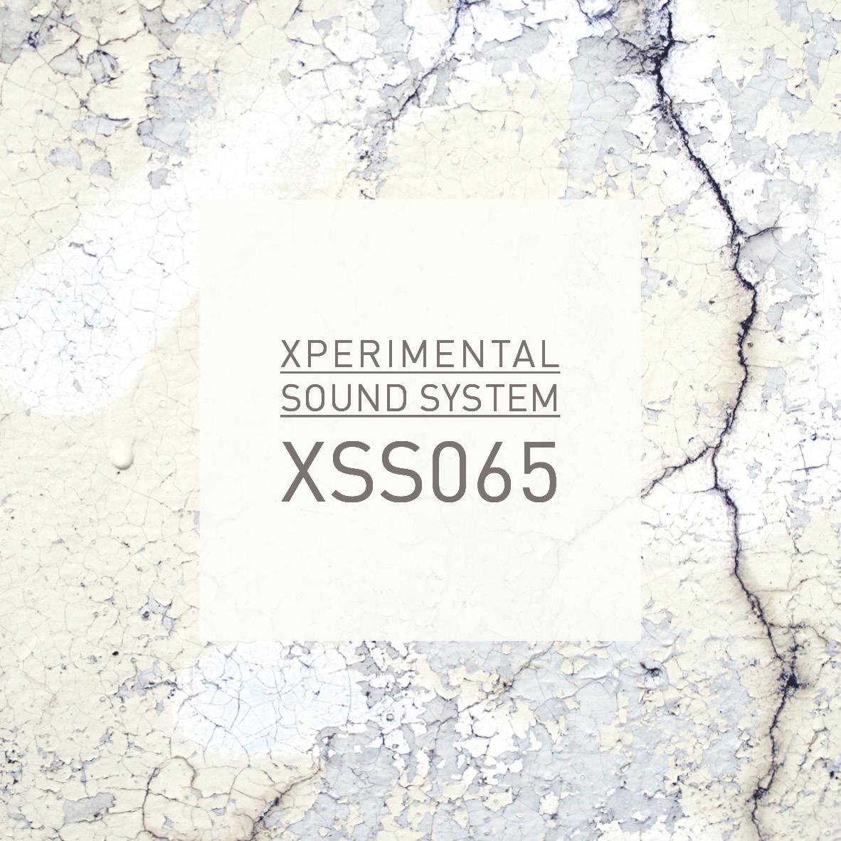 xss065